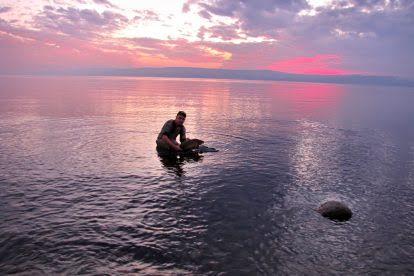 תחרות בינלאומית לדייג קרפיונים בכינרת
